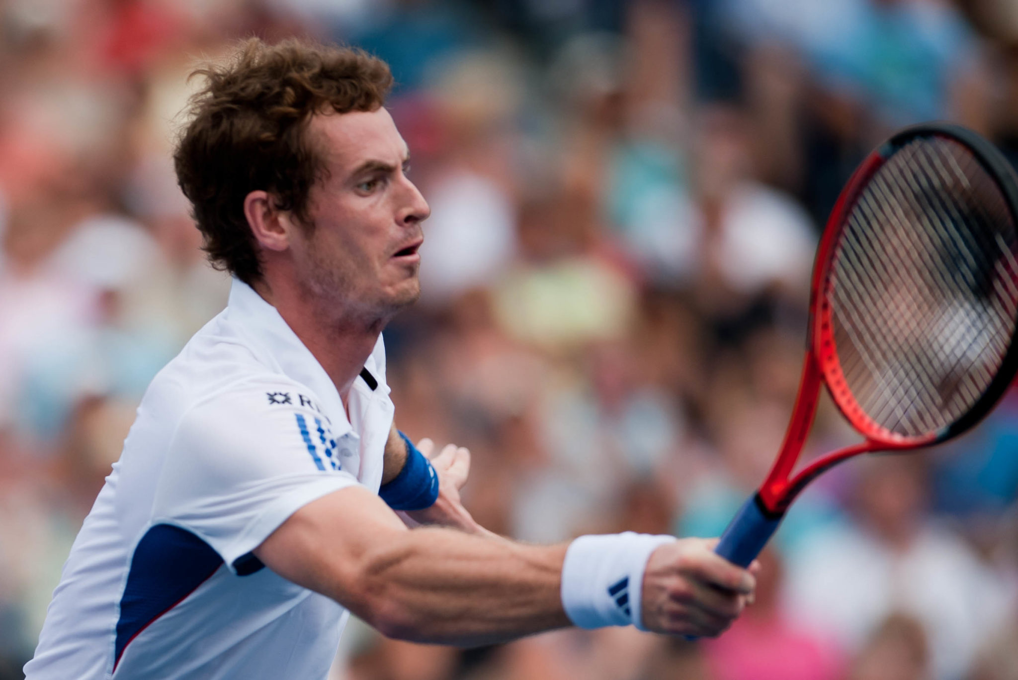 Life after retirement for tennis players - Andy Murray