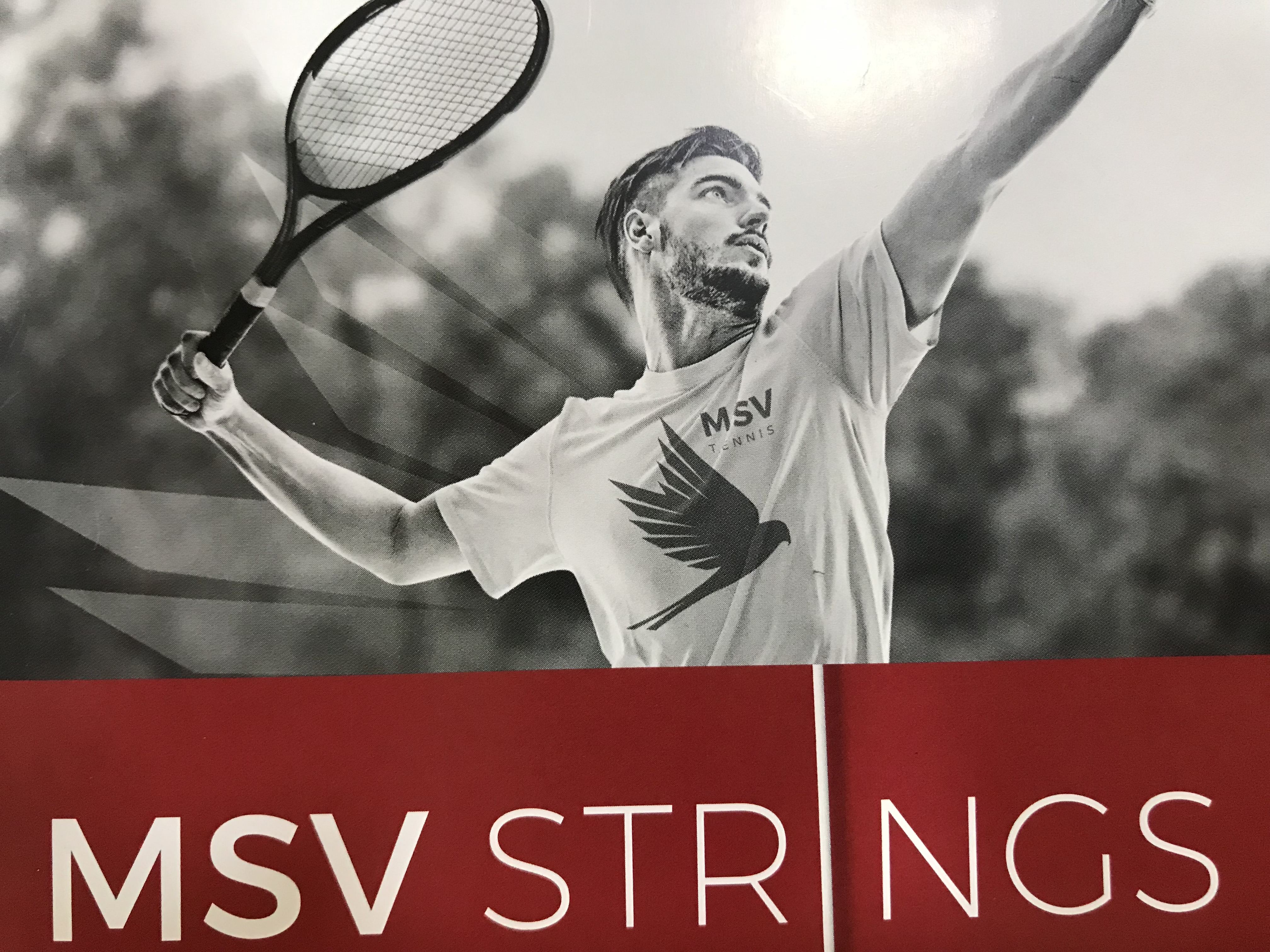 MSV Strings - Top quality strings at a good price